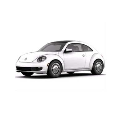Volkswagen Beetle 2.0L Petrol Battery